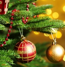 image of ornaments hanging from a Christmas tree